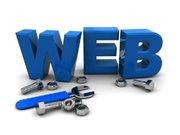 Bharat Info Service Web Designing